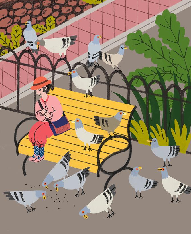 Pigeons by Hye Jin Chung