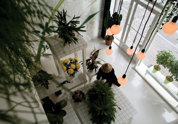 http://www.pointsupreme.com/content/commercial/aktipis-flower-shop.html