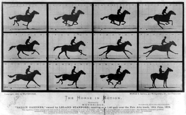 The-Horse-in-Motion-by-Eadweard-Muybridge-1878.jpg