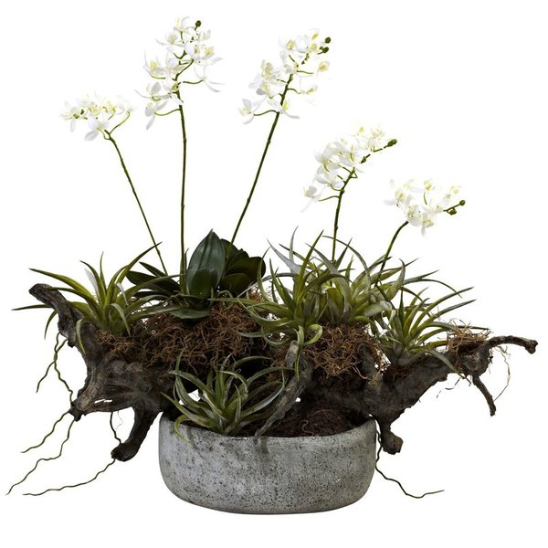 Orchid-and-Succulent-Garden-with-Driftwood-and-Decorative-Vase.jpg