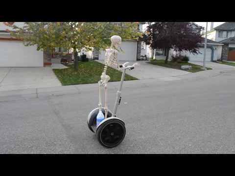 A Halloween skeleton decoration rides a Segway outdoors down a street.