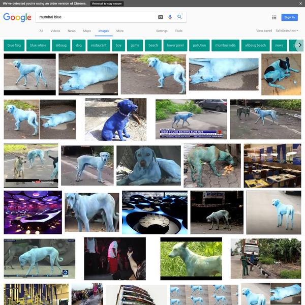 mumbai blue - Google Search
