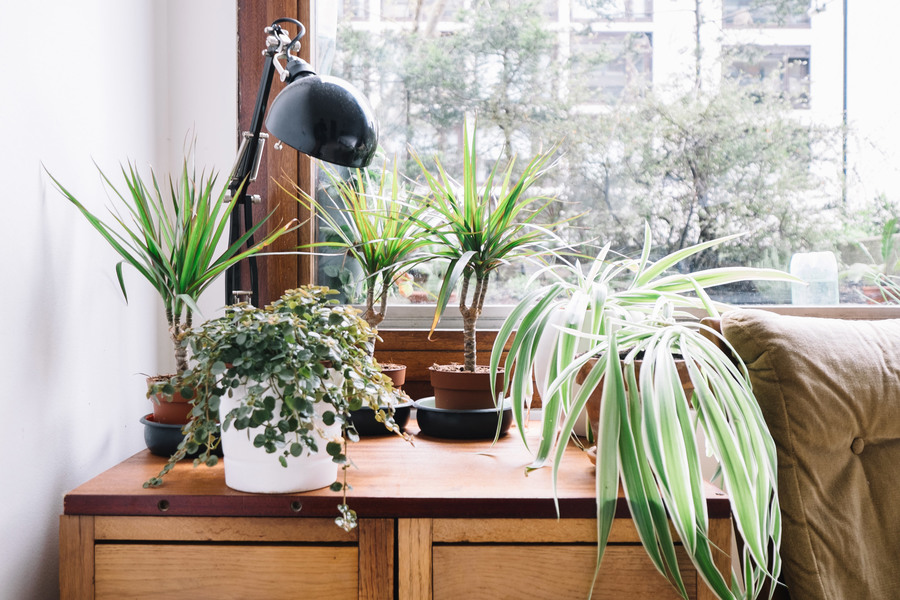 barbican-residents-photography-book-anton-rodriguez-residential-interiors-lucy-james_dezeen_2364_col_1.jpg