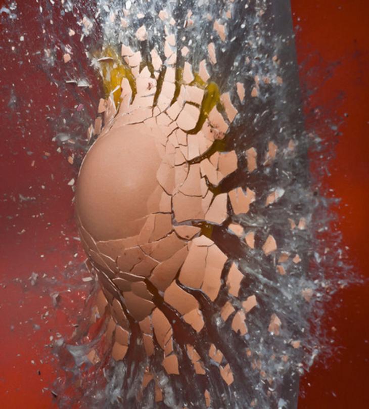Splashing-Egg.jpg