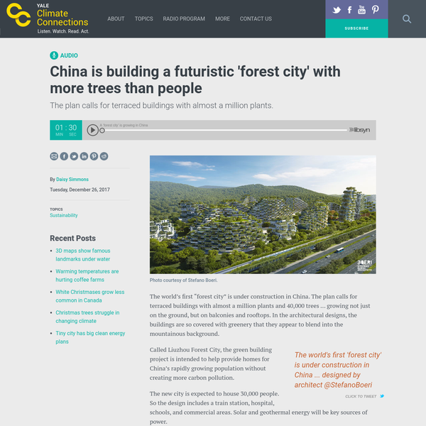 "The world's first ""forest city"" is under construction in China. The plan calls for terraced buildings with almost a million plants and 40,000 trees ... growing not just on the ground, but on balconies and rooftops. In the architectural designs, the buildings are so covered with greenery that they appear to blend into the mountainous background."