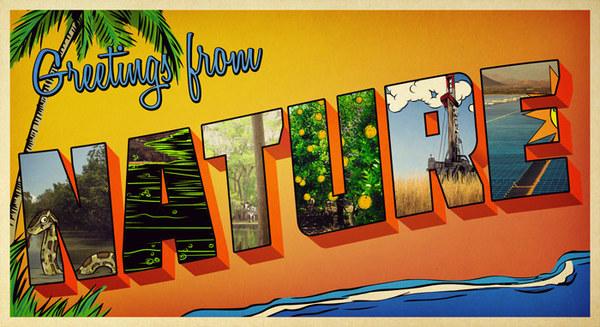 Postcard Illustration for UF, Digital, 2013