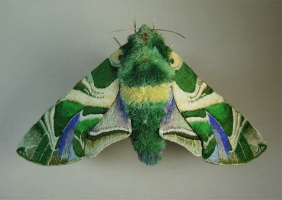Yumi_Okita_this_is_colossal.moth_01jpg_hr.jpg