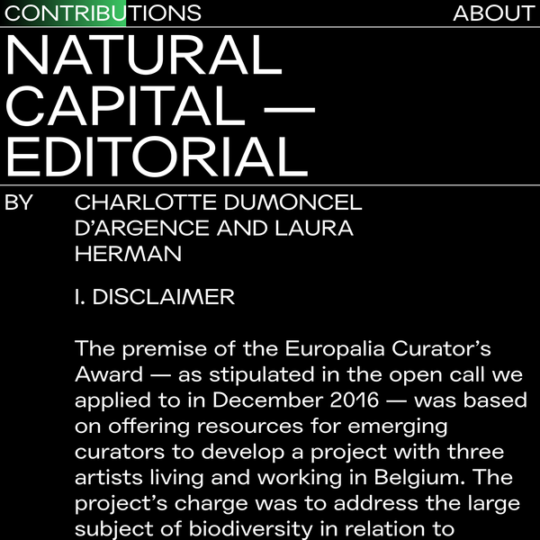 The premise of the Europalia Curator's Award - as stipulated in the open call we applied to in December 2016 - was based on offering resources for emerging curators to develop a project with three artists living and working in Belgium.