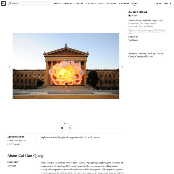 Cai Guo-Qiang | Fallen Blossoms: Explosion Project (2009) | Artsy