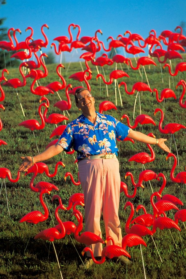 Don Featherstone, Inventor of the Pink Flamingo (in Plastic), Dies at 79