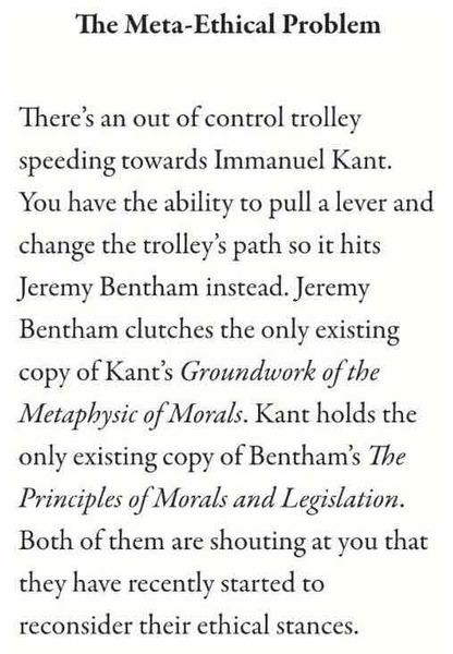 excerpt from McSweeneys