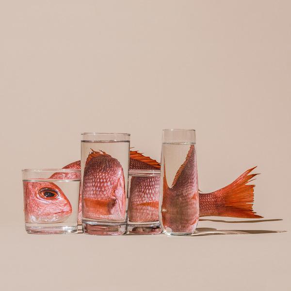 Fish-Behind-Water.SuzanneSaroff.jpg