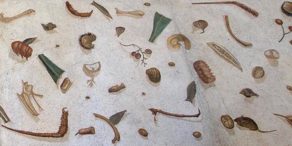 Unswept Floor Mosaic - Vatican Museum