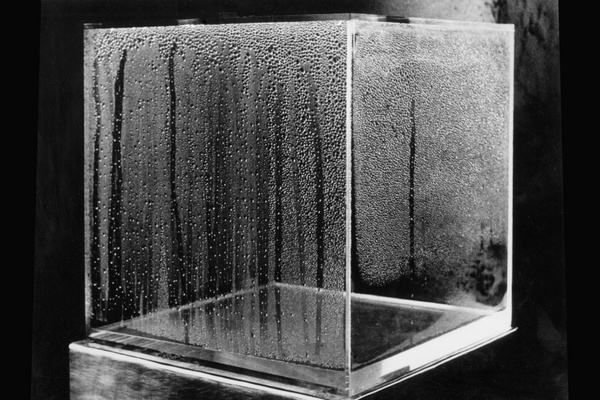 Haacke_Condensation-Cube_MACBA_1500.jpg