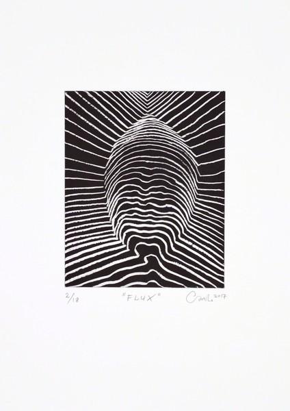 Flux by Carl Krull