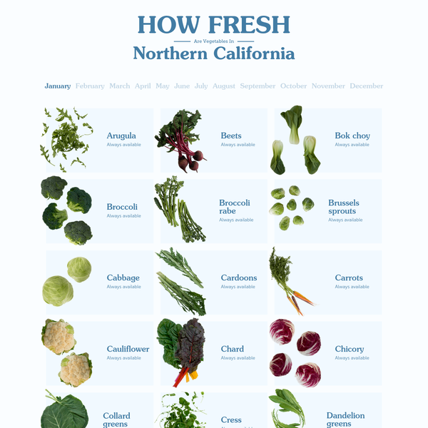 A catalogue of vegetable seasonality in Northern California