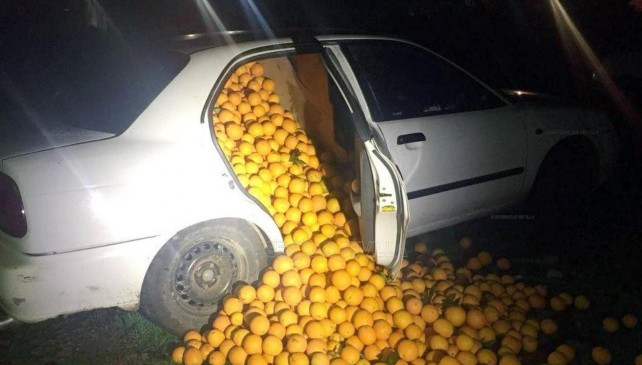 oranges car