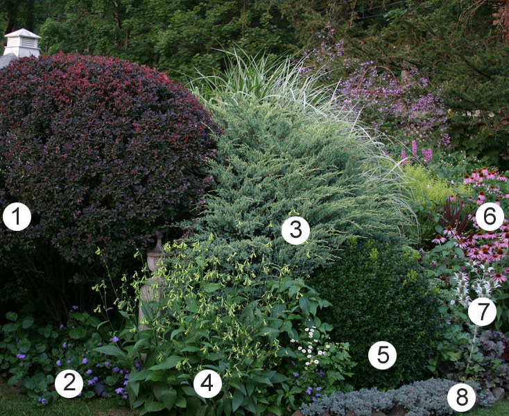 numbered-photo-plants.jpeg