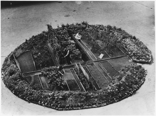 WWII Victory Garden in a London Bomb Crater