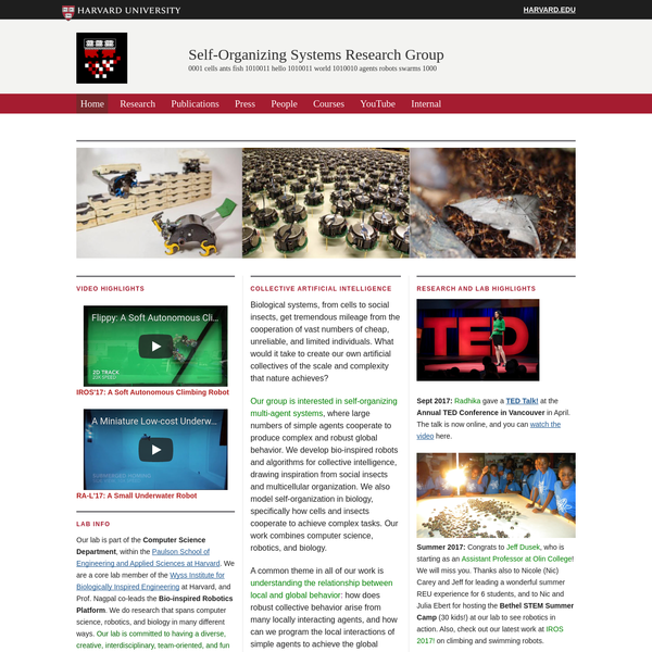 Self-Organizing Systems Research Group
