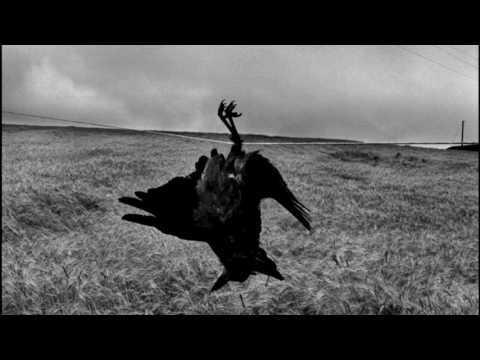 Josef Koudelka - Gypsies and Exiles - Photography