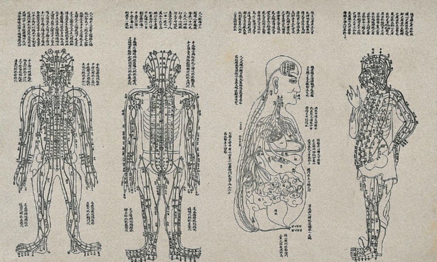 cropped-cropped-ancient-acupuncture-channel-diagrams-1.png
