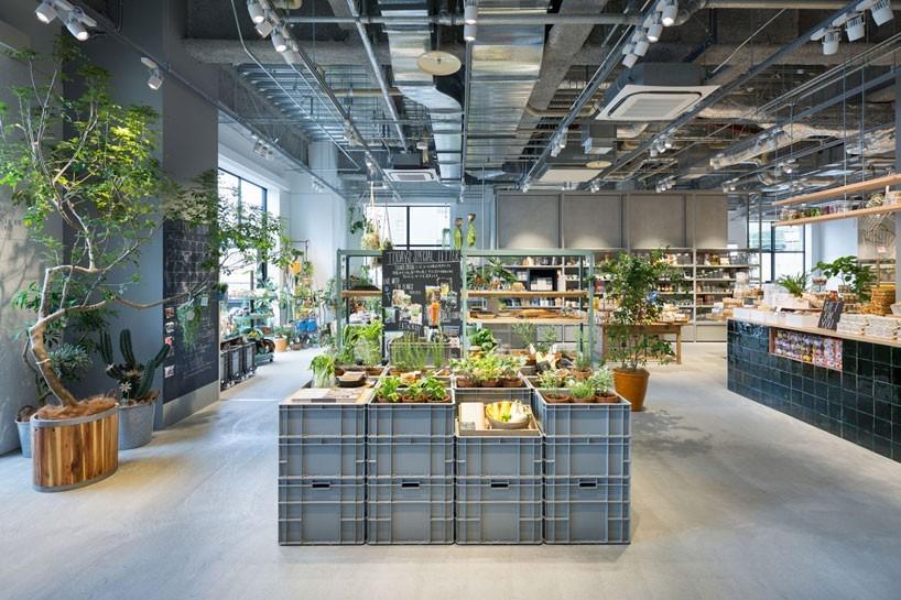 schemata-architects-todays-special-shop-jyoto-designboom-01-818x545.jpg