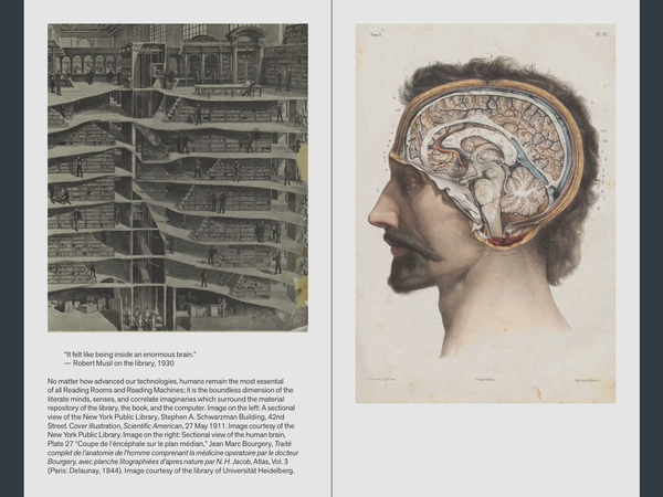 """Sections of library and brain, from """"Fantasies of the Library"""""""