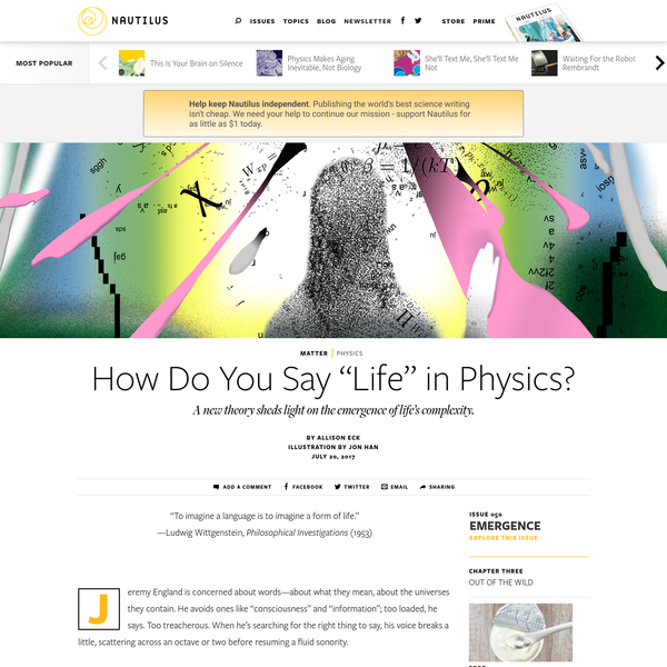 """How Do You Say """"Life"""" in Physics? - Issue 50: Emergence - Nautilus"""