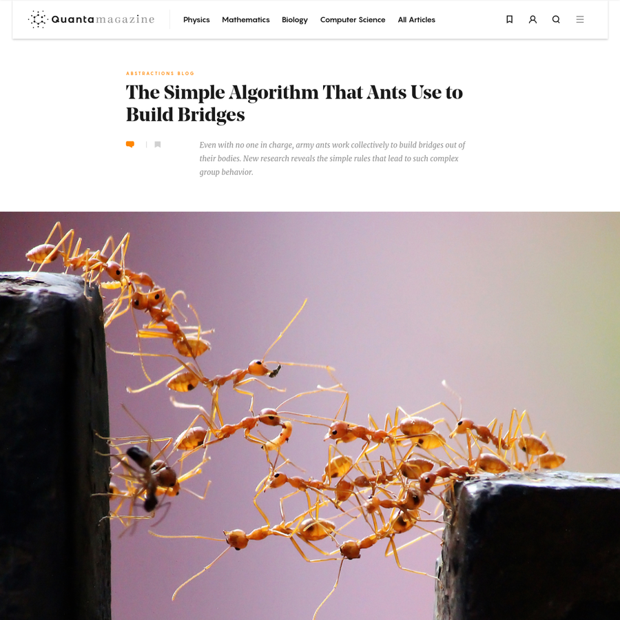 Army ants form colonies of millions yet have no permanent home. They march through the jungle each night in search of new foraging ground. Along the way they perform logistical feats that would make a four-star general proud, including building bridges with their own bodies.