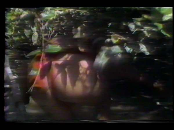 """Image Union episode featuring """"The Laughing Alligator"""" by Juan Downey. Color video. A video art piece examining Downey's experience living with the Yanomami Indians of the Amazon Rainforest. Continue reading →"""