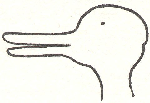 "The ""duck-rabbit"""