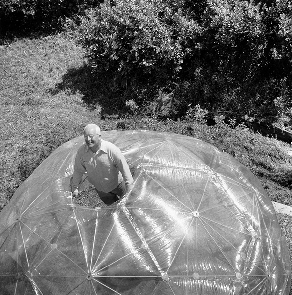 bucky-1949-dome-hla.jpg