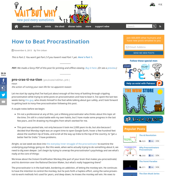How to Beat Procrastination - Wait But Why