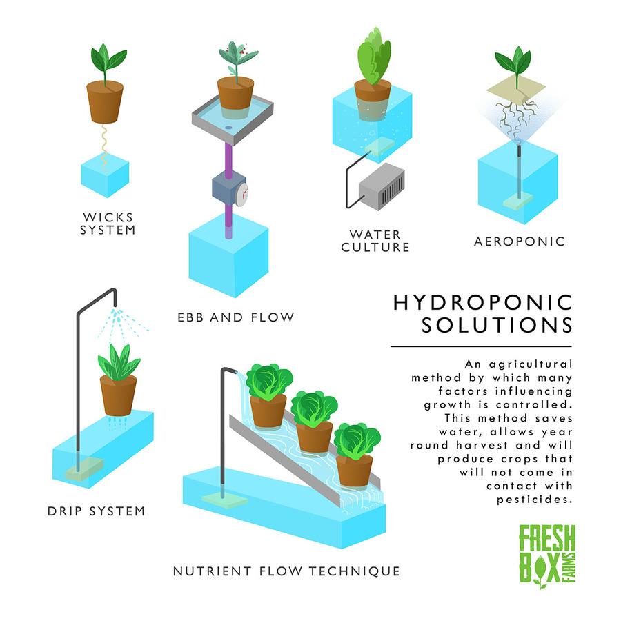 HydroponicsCEA.jpg