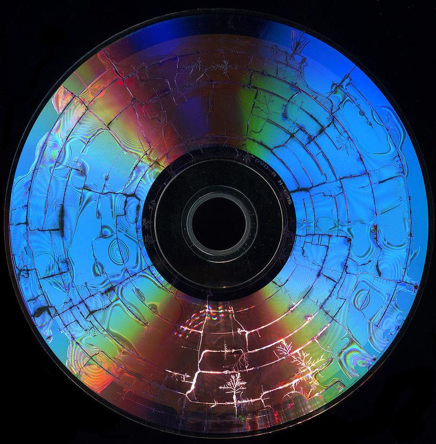 1024px-Microwaved_disks-cover_fractal_trees-scann_PNr-0050.jpg