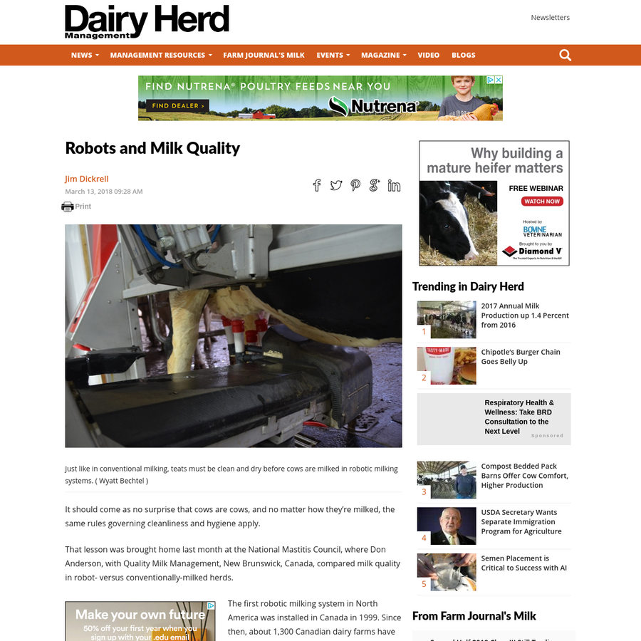 It should come as no surprise that cows are cows, and no matter how they're milked, the same rules governing cleanliness and hygiene apply. That lesson was brought home last month at the National Mastitis Council, where Don Anderson, with Quality Milk Management, New Brunswick, Canada, compared milk quality in robot- versus conventionally-milked herds.