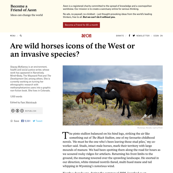 Are wild horses icons of the West or an invasive species? - Stacey McKenna   Aeon Ideas