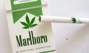 marijuana-cigarettes-300x177.jpg
