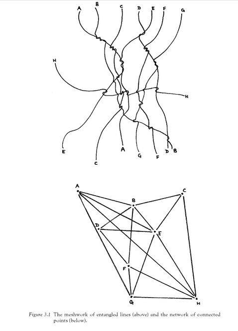 tim ingold - lines