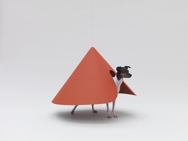 Architecture for dogs curated by Kenya Hara