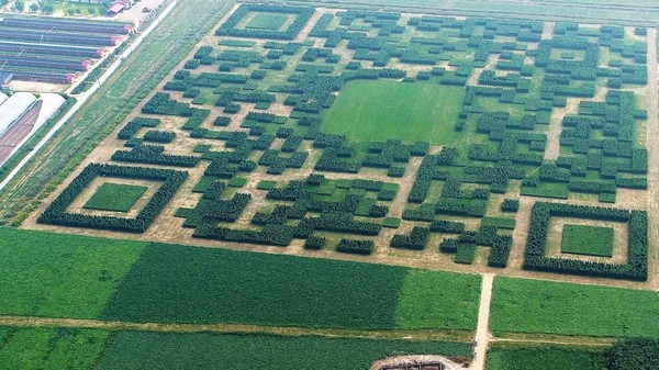 http://www.scmp.com/news/china/society/article/2111311/chinese-village-builds-giant-qr-code-field-effort-connect