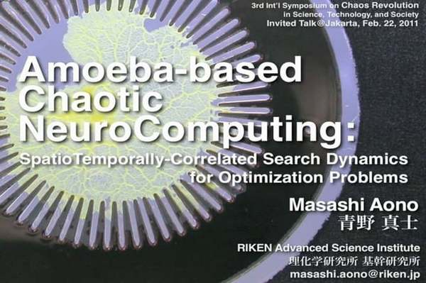 Amoeba NeuroComputing (Part 1) [True Slime Mold Physarum]