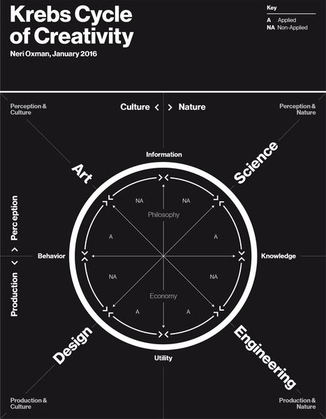 Cycle Créativité Krebs