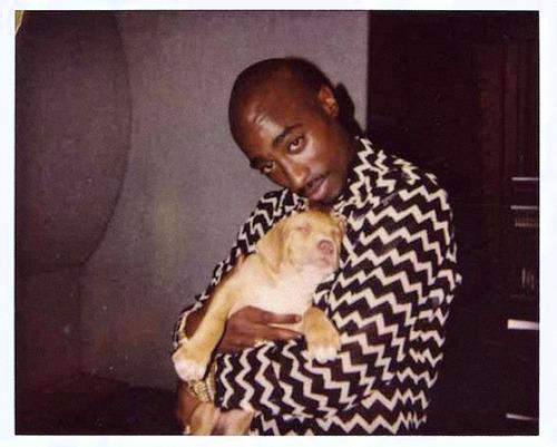 tupac-dog.jpg