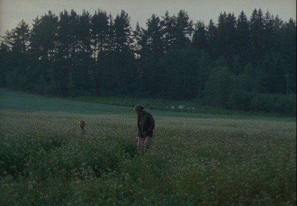 Lo specchio (Zerkalo, 1972) - Andrej Tarkovskij