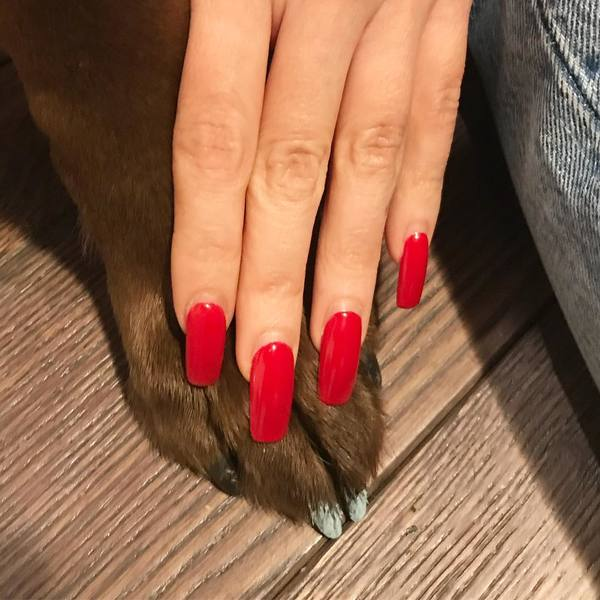 """1,438 Likes, 10 Comments - NAILS by MEI (@nailsbymei) on Instagram: """"Nail friends💅🏻💕💜 Time to get New manicure 🐶💖 My Red GEL EXTENSIONS are Very strong even past 4weeks..."""""""