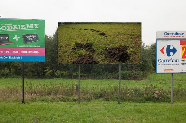 billboard_bozhkov.jpg