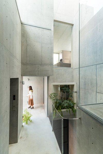 akihisa-hirata-tree-ness-house-otsuka-tokyo-japan-designboom-07.jpg