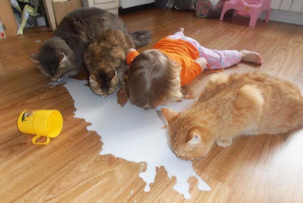 kids-act-like-animals-cats__605.jpg
